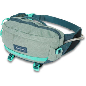 Dakine Hot Laps 5L Hip Bag lichen
